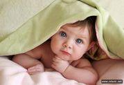 Денежное вознаграждение за программу «Суррогатное материнство»  от 12